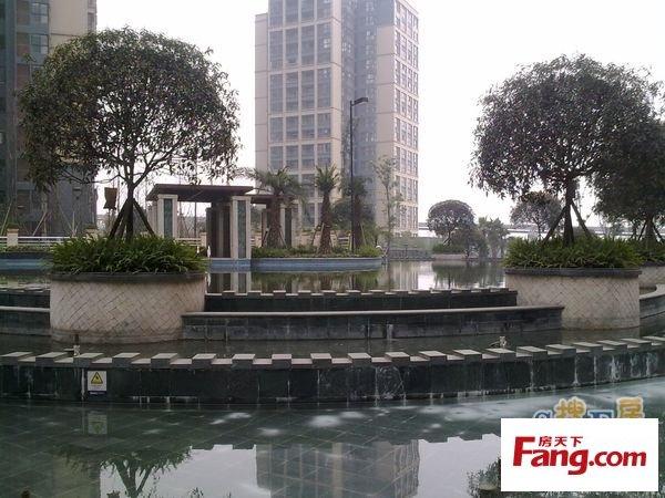 重庆奥林匹克花园七期紫枫郡 重庆金渝大道机场路交汇处